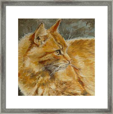 Got Marmelade? Framed Print by Veronica Coulston