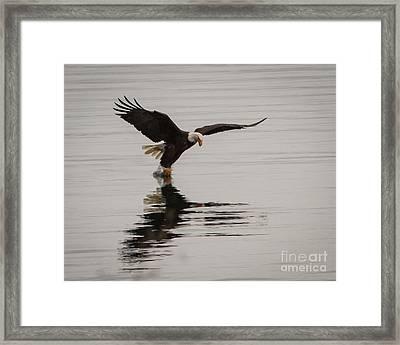 Got One Framed Print by John Holen