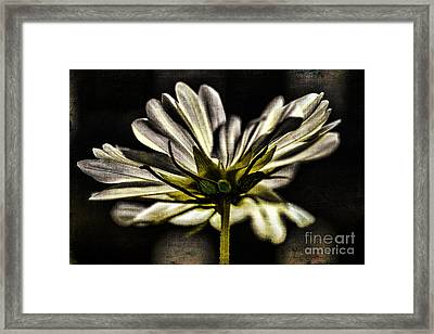 Got Your Back Framed Print