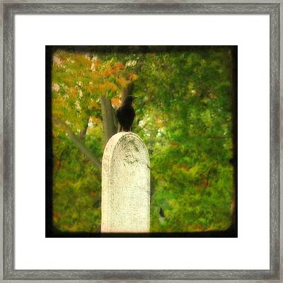 Gothic Autumn Framed Print by Gothicrow Images