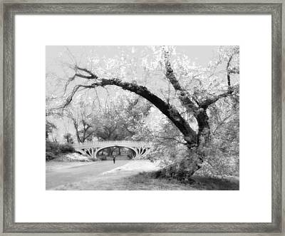 Gothic Bridge Framed Print