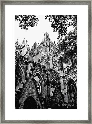 Gothic Cathedral Of Den Bosch Framed Print by Carol Groenen