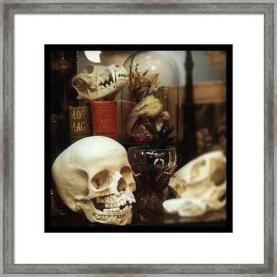 Gothic Curio Framed Print