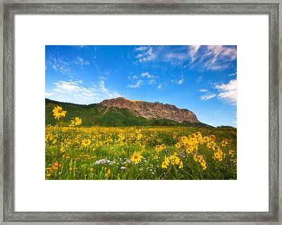 Gothic Meadow Framed Print