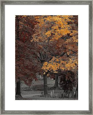 Gothic Nature Framed Print by Gothicrow Images
