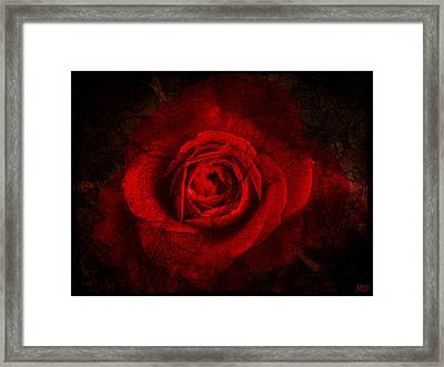 Gothic Red Rose Framed Print by Absinthe Art By Michelle LeAnn Scott