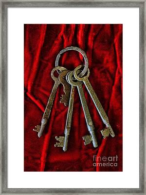 Gothic - Skeleton Keys Framed Print by Paul Ward