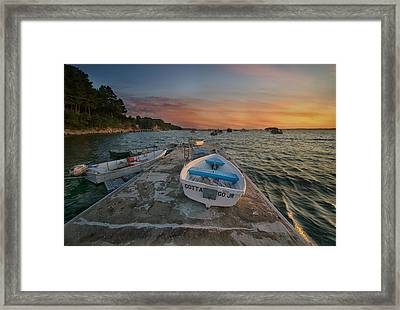 Gotta Go Jr. Framed Print by Darylann Leonard Photography