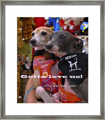 Gotta Love Us Framed Print by ARTography by Pamela Smale Williams