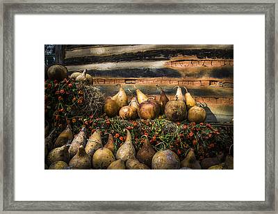Gourds Framed Print by Debra and Dave Vanderlaan