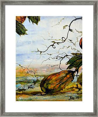 Gourds Framed Print