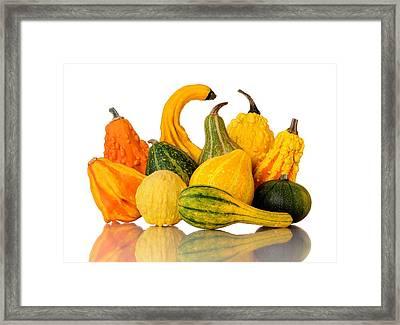 Gourds Framed Print by Jim Hughes