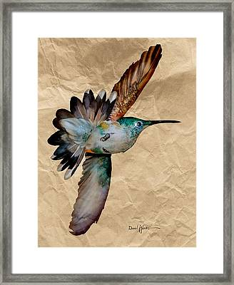 Da180 Grace Daniel Adams Framed Print