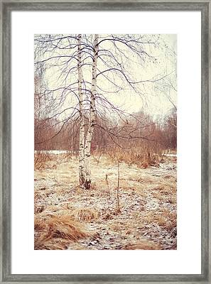 Grace In The Snow. Winter Poems Framed Print by Jenny Rainbow