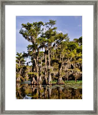 Grace Of Caddo Framed Print by Lana Trussell