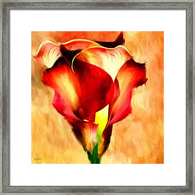 Grace Of Red Framed Print