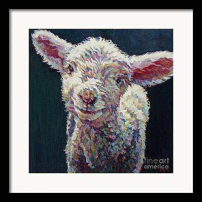 Ovine Framed Prints