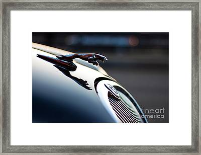 Grace Space Pace Framed Print