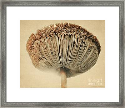 Grace Under Mushroom Framed Print