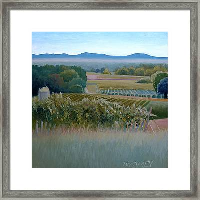 Grace Vineyards No. 1 Framed Print by Catherine Twomey