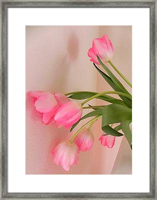 Graceful And Delicate Framed Print