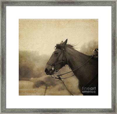 Graceful Beauty Framed Print