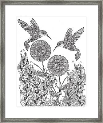 Graceful Humming Birds Framed Print