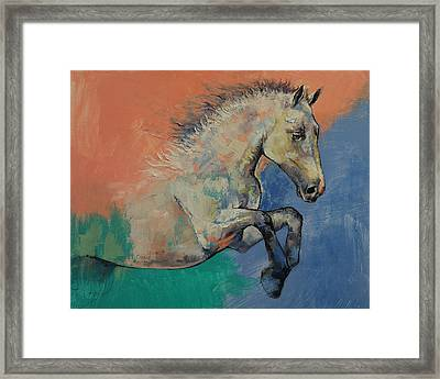 Graceful Jets Framed Print by Michael Creese
