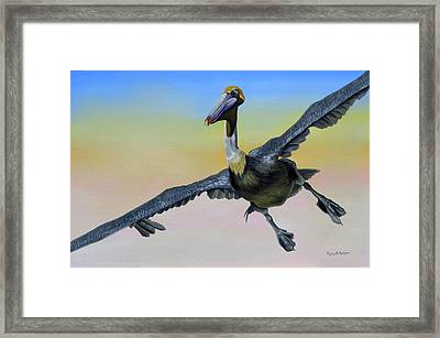 Graceful Landing Framed Print by Phyllis Beiser