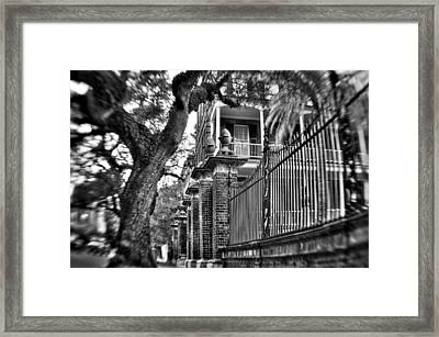 Graceful Old Oak And Fence One Framed Print by Andrew Crispi