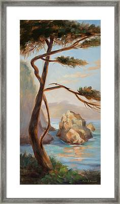 Graceful Pine In Afternoon Light At Point Lobos Framed Print by Karin  Leonard