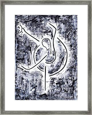 Graceful Swan Framed Print by Kamil Swiatek