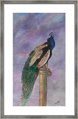 Graceful Framed Print by Usha Rai