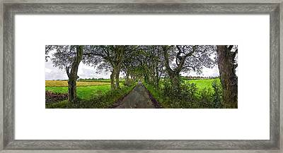 Gracehill Framed Print