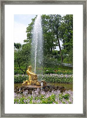 Graden Fountain At Peterhoff Russia Framed Print by Linda Phelps