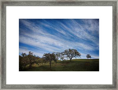 Gradually Framed Print by Laurie Search