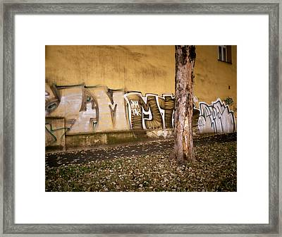 Graffiti Framed Print by Shaun Higson