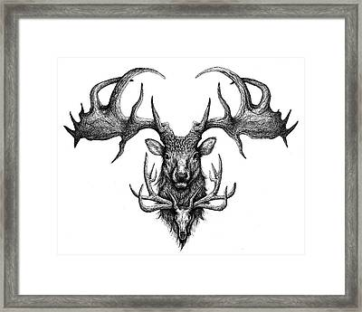Graham's Ghost Framed Print by Danielle Trudeau