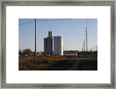 Grain Framed Print by Larry Lamb