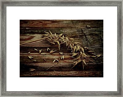 Grain Framed Print by Odd Jeppesen