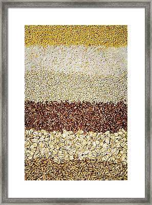 Grains Framed Print by Elena Elisseeva
