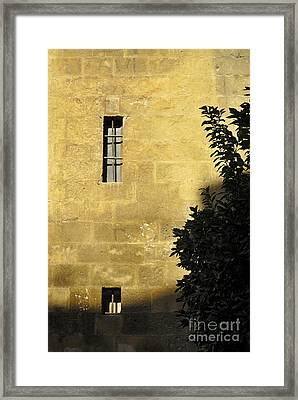 Granada Cathedral Framed Print by Guido Montanes Castillo