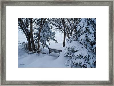 Grand Beach Solitude Framed Print by Joanne Smoley
