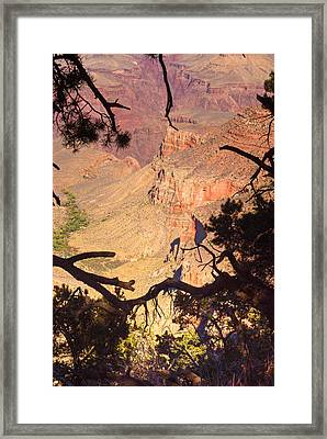 Grand Canyon 35 Framed Print