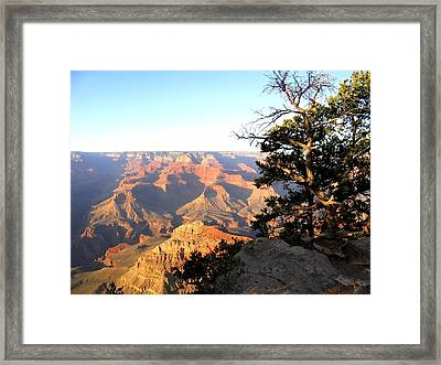 Grand Canyon 63 Framed Print
