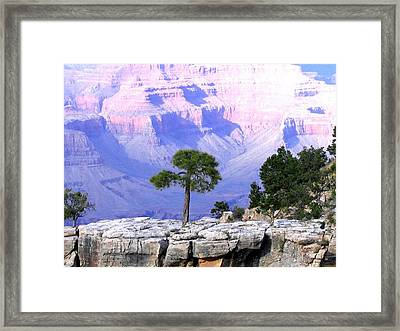 Grand Canyon 73 Framed Print by Will Borden