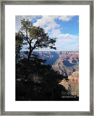 Grand Canyon Afternoon Framed Print by Stu Shepherd