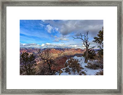 Grand Canyon And Dead Tree Framed Print
