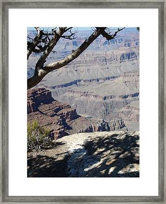 Framed Print featuring the photograph Grand Canyon by David S Reynolds