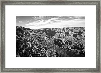 Grand Canyon December Glory In Black And White Framed Print by Lee Craig